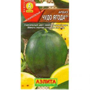 Арбуз Чудо ягода 1г (семена)